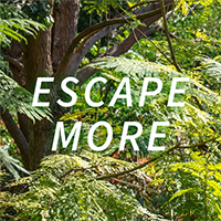 ESCAPE MORE